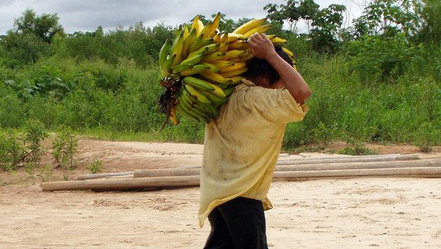 Das Volk der Tsimane lebt im bolivianischen Amazonasgebiet (Bild: AP/Michael Gurven/St. Luke's Health System Kansas)
