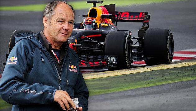 """Berger: """"Red Bull hat die Garantie für den Erfolg"""" (Bild: GEPA)"""