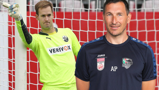 """ÖFB-Torhüter? """"Marco Knaller klare Nummer eins"""" (Bild: GEPA)"""
