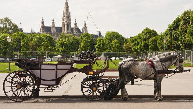 Ein Fiaker vor dem Rathaus (Bild: thinkstockphotos.de)