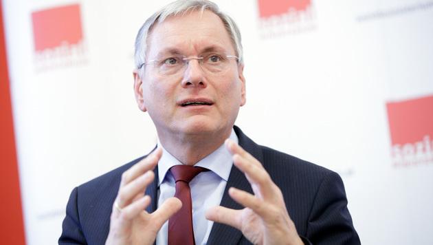 Sozialminister Alois Stöger (Bild: APA/GEORG HOCHMUTH)