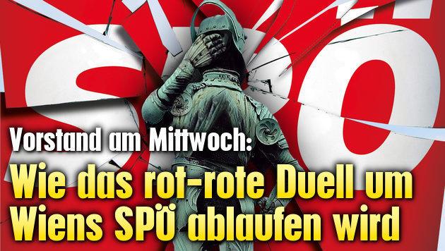Wie das rot-rote Duell um Wiens SPÖ ablaufen wird (Bild: APA/HERBERT NEUBAUER, Kronen Zeitung)