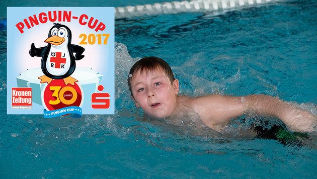 Tolle Leistungen beim Pinguin-Cup des Bezirkes Schärding im bayrischen Hallenbad. (Bild: Kronen Zeitung/ Chris Koller)