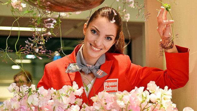 Eine Jubiläumsorchidee zum 25. Geburtstag der Messe Blühendes Österreicher gibt´s vor Ort zu kaufen (Bild: Markus Wenzel)