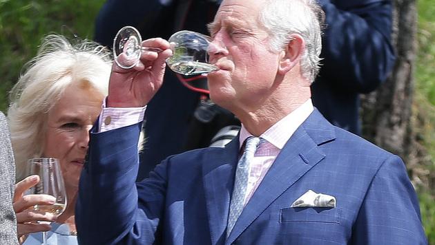 Cheers und Prost, Your Highnesses! (Bild: APA/GEORG HOCHMUTH)