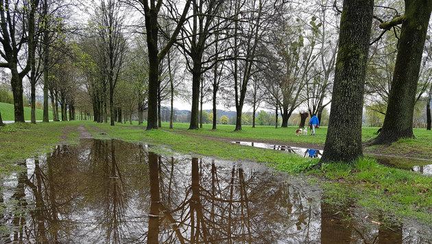 Regenschauer sind vor allem ab Dienstag immer wieder zu erwarten (Bild: Kronen Zeitung)