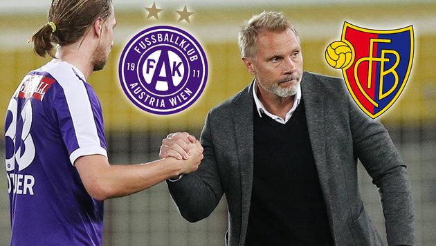 """Austria: Sagt der FC Basel """"Ja"""", ist Fink weg (Bild: GEPA, Austria Wien, FC Basel)"""