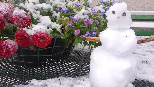 """Wetteralarm: Frost und Schnee sogar in Wien (Bild: """"Krone""""-Leserreporter)"""