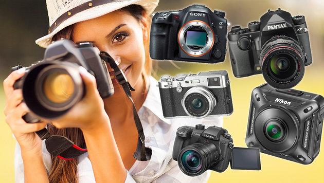 Die besten Kameras für Einsteiger und Profis (Bild: thinkstockphotos.de, Lumix, Pentax, Sony, Fujifilm, Nikon)
