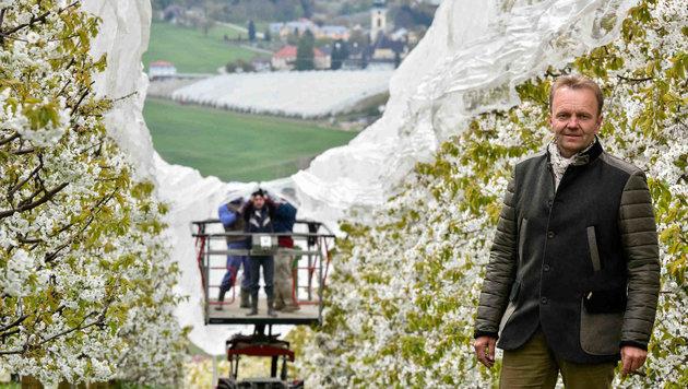 Obstbauer Horst Hubmer vom Firlingerhof: Blüten werden vor Frost geschützt (Bild: Markus Wenzel)