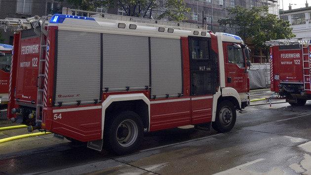 Gehbehinderte Frau (68) bei Wohnungsbrand getötet (Bild: APA/HANS PUNZ (Symbolbild))