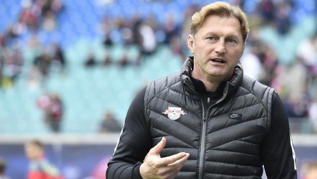 RB-Coach Hasenhüttl kontert Weinzierl-Kritik (Bild: AFP)