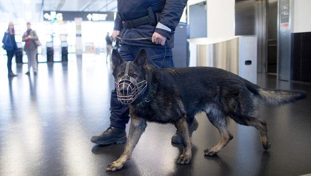Soldat konsultierte nach Festnahme in Wien Berater (Bild: APA/GEORG HOCHMUTH)