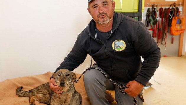 Liebevoll kümmert sich Tierpfleger Mustafa von der Pfotenhilfe Lochen um die verletzte Nana. (Bild: Pressefoto Scharinger © Marc Hiedl)