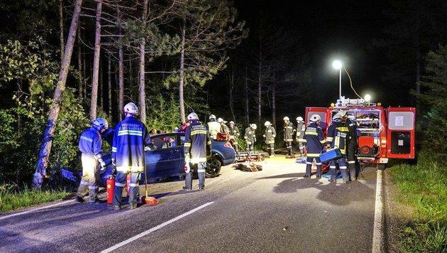 Mit Pkw gegen Baum: Lenker in NÖ schwer verletzt (Bild: Einsatzdoku - Lechner)
