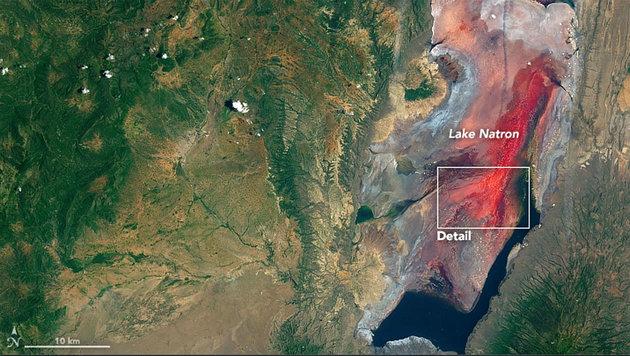 Satellit fotografiert rot gefärbten See in Afrika (Bild: NASA Earth Observatory)