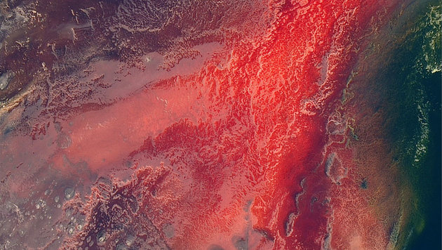 Ein Blick aus dem All auf den Lake Natron in Tansania (Bild: NASA Earth Observatory)