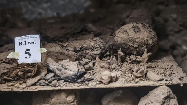 """Mumien in Ägypten als """"Nachricht der Vorfahren"""" (Bild: AFP)"""