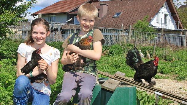 Die neunjährige Valentina und ihr Bruder Maximilian (7) sollen sich von ihren Hühnern trennen. (Bild: Marion Hörmandinger)