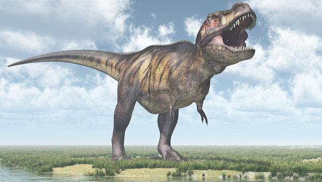 Tyrannosaurus rex biss kräftiger zu als gedacht (Bild: thinkstockphotos.de)