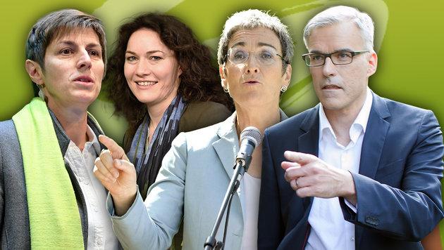 Astrid Rössler, Ingrid Felipe, Ulrike Lunacek, Lothar Lockl (Bild: APA/H. FOHRINGER, B. GINDL, H.P. OCZERET, G. HOCHMUTH)