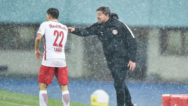 Meister Salzburg verlängert Vertrag mit Lainer (Bild: GEPA)