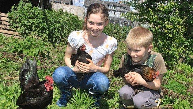 Valentina (9) und Maximilian (7) fürchten um ihre Hühner. (Bild: Marion Hörmandinger)