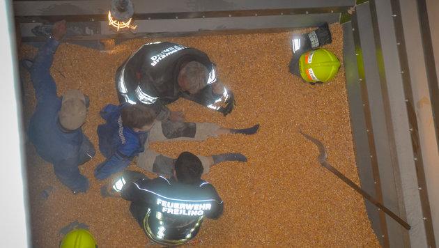 Der 13-Jährige (sitzend) wurde gerade aus dem Mais befreit, wartet auf die endgültige Rettung (Bild: FF Freiling/Buschek Sebastian)