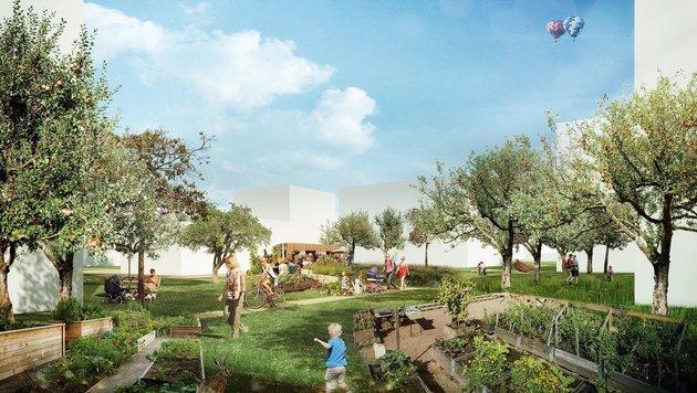Im neuen Stadtteil Ebelsberg werden fünf Quartiere mit insgesamt 3000 Wohnungen errichtet. (Bild: Planungsteam Masterplan Ebelsberg)