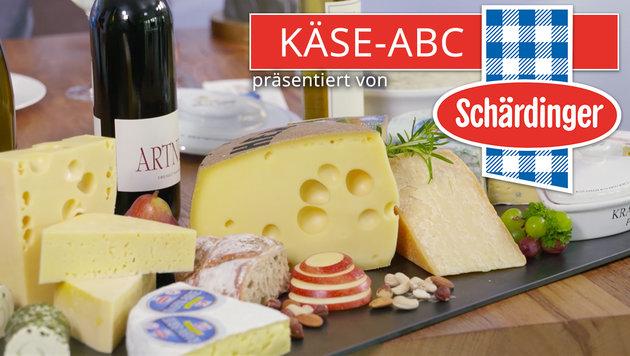 Das große Schärdinger-Käse-ABC (Bild: krone.tv, Schärdinger)