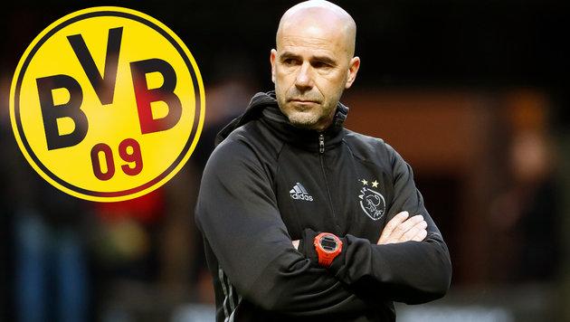 Wechsel von Ajax-Coach Bosz nach Dortmund perfekt (Bild: AFP)