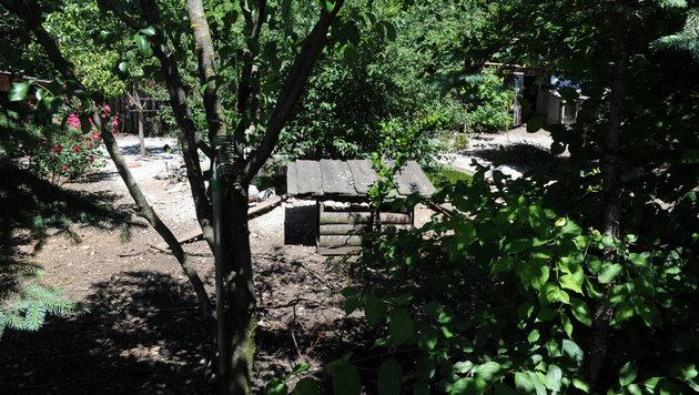 In diesem Anwesen in der Gemeinde Scharnstein wurden 18 Hühner grausam erschlagen. (Bild: Klemens Fellner)