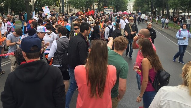 Kunterbuntes Treiben bei Wiener Regenbogenparade (Bild: krone.tv)