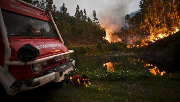 Portugal: Waldbrand tötet mindestens 60 Menschen (Bild: AFP)