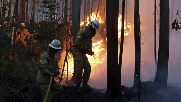 Portugal: Waldbrand tötet mindestens 60 Menschen (Bild: The Associated Press)