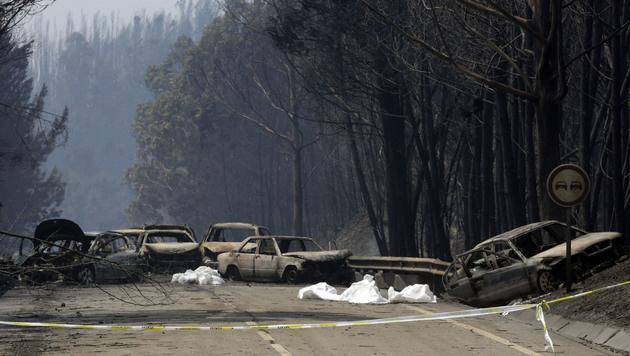 Feuerhölle in Portugal: Kritik an Feuerwehr (Bild: AP)