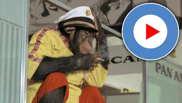 """""""Mein Vater, der Affe und ich"""" (Bild: Lisa Film)"""