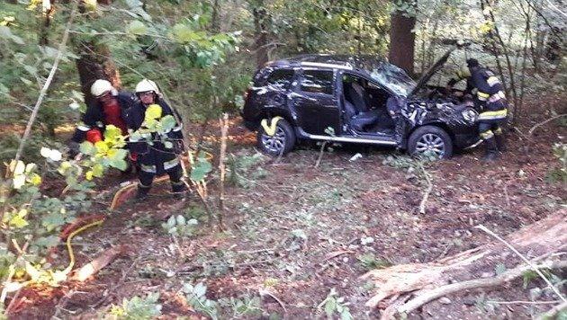 Der Wagen kam von der Straße ab und landete im Dickicht. (Bild: FF St. Walburgen)