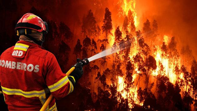 Feuerhölle in Portugal: Kritik an Feuerwehr (Bild: AP, AFP/MIGUEL RIOPA)