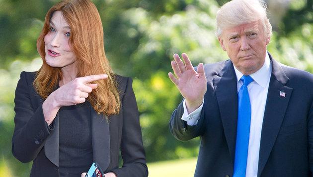 Carla Bruni dementiert Affäre mit Donald Trump (Bild: face to face, krone.at-Grafik)