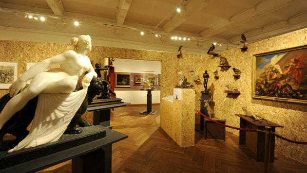 """Ausstellung """"Katzenkorb & Löwengrube"""" begeistert (Bild: NHM/Alice Schumacher)"""