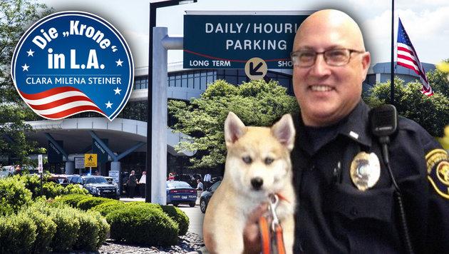 Jeff Neville (kl. Bild) wurde am Flughafen der Kleinstadt Flint niedergestochen. (Bild: AP, twitter.com, krone.at-Grafik)