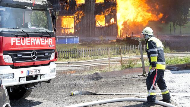 Großfeuer auf Bauernhöfen in NÖ und Vorarlberg (Bild: Mathis Fotografie)