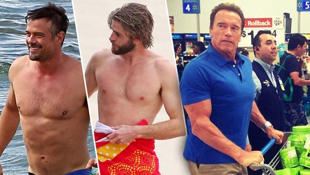 Männer mit Muskeln: Josh Duhamel, Liam Hemsworth und Arnold Schwarzenegger (Bild: www.pps.at, face to face)
