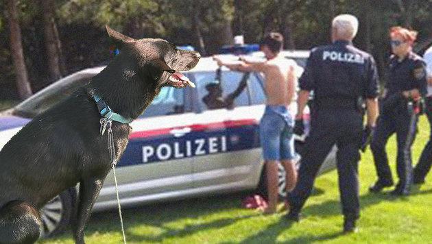 """Donaupark: Sextäter von Hund und Herrl überwältigt (Bild: """"Krone""""-Leserreporter)"""