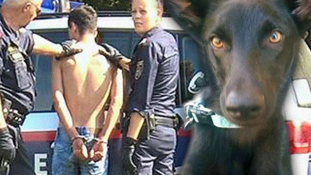"""""""So stellte ich mit meinem Hund den Sexverbrecher"""" (Bild: facebook.com)"""