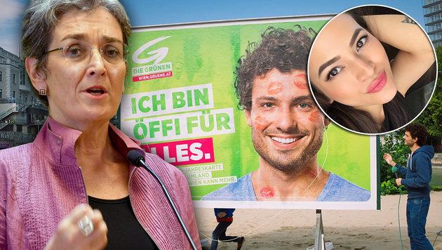 Katia Wagner: Die Grünen. Ein Nachruf (Bild: APA/BARBARA GINDL, facebook.com, Krone.at-Grafik)