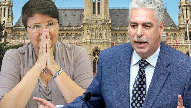 """""""Haben Problem vor EU, wenn Wien so weitermacht"""" (Bild: shutterstock, Peter Tomschi, APA/ROLAND SCHLAGER)"""