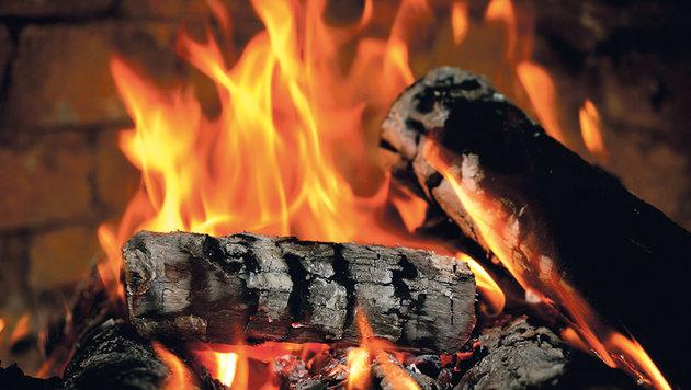 Die Kombi aus Kaminholz und Holzkohlebriketts sorgt für stundenlange wohlige Wärme. (Bild: iStock, Viorika)