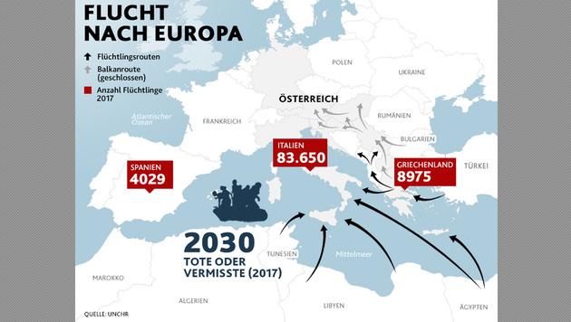 Alarmplan: 750 Soldaten für Grenzsicherung bereit (Bild: krone.at-Grafik)